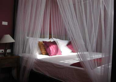 enchanted_bed2