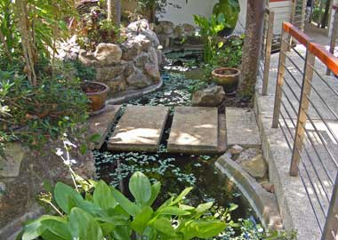 fish pond on the terrace